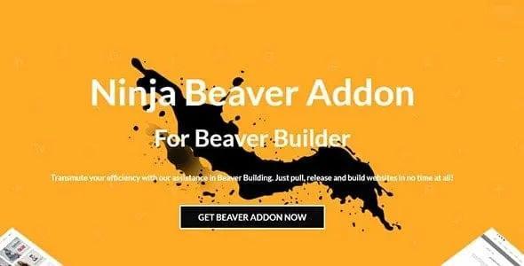 Ninja Beaver Pro – Addon For Beaver Builder